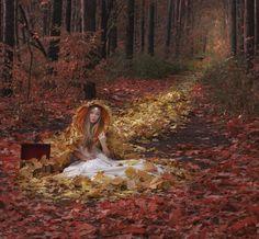 ~Autumn Red~
