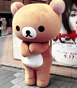dancing loop bear rilakkuma #gif from #giphy