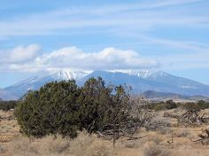 Desert landscape scene captured in Arizona includes distant mountains with clouds and blue sky. Photo by Micrathena.