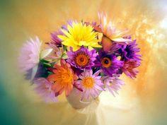 Цветы можно встретить сегодня повсюду: в небольших студиях флористики, в интернет-магазинах, в специализированных Домах цветочной моды.
