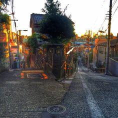豊島区高田一丁目 : 魅惑のY字路 | Sumally (サマリー)