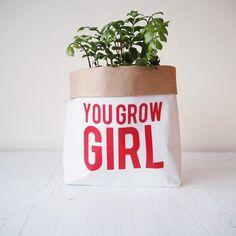 You grow girl, paper bag, plant pot holder, storage bag. Paper Sack, Small Potted Plants, Tooth Fairy, Plant Holders, Desks, Bag Storage, Really Cool Stuff, Planter Pots, Shelves
