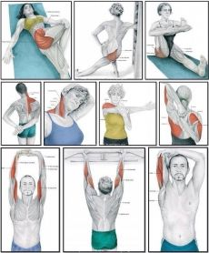 Muscle Stretches, Back Pain Exercises, Stretching Exercises, Health And Fitness Tips, Health And Wellbeing, Yoga Fitness, Shoulder Workout Routine, Yoga Muscles, Medical Anatomy