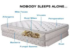 """Do you think is it enough to change your mattress sheets and some dusting is enough? """"BIG NO"""" is the answer. Click below to find out why regular deep mattress cleaning is important and how it can be done.  https://www.cleanit.ae/blog/Mattress-cleaning-in-Dubai-UAE  #Deepmattresscleaning #Mattresscleaning #MattresscleaningDubai #Dubaiclean #Sharjahclean #Booknow #Professionalcleaning #Cleaningcompany #Cleaningservices #BestinDubai"""