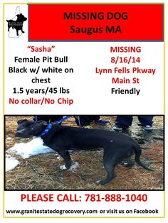 **Reading, MA - Possible sighting 8-28-14 in the vicinity of Forest & Colburn Sts. please keep an eye out. Note location and direction of travel if seen! Call: 781-334-8364