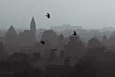 Dutch cityscape | Flickr - Photo Sharing!