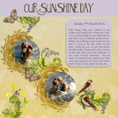 Our Sunshine Day, a project by Algera Scrapbook layout using the Wonderful Woodland Walk kit from Daisytrail. Artwork by Siobhan.