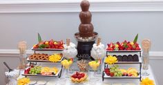 Chocolate fountain and fruit display
