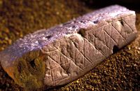 (Circa 75,000 BCE – 73,000 BCE)      Pieces of ochre rock decorated with geometric patterns found at Blombos Cave in South Africa, nearly 200 miles from Cape Town, in 2002, have been dated to the Middle Stone Age, equivalent to the European Middle Paleolithic. Early Attempt to Record Information or Early Art?