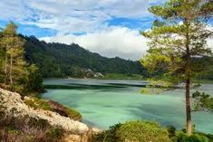 Image result for photos of Sulawesi