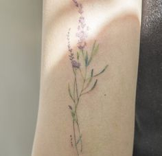 Image uploaded by Lpbc. Find images and videos about flowers, tattoo and lavanda on We Heart It - the app to get lost in what you love. Dream Tattoos, Future Tattoos, Love Tattoos, Body Art Tattoos, New Tattoos, Small Tattoos, Tattoos For Women, Tatoos, Pretty Tattoos