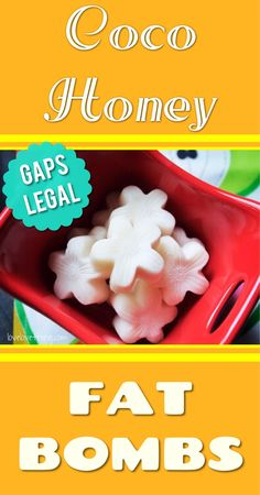 Coco Honey FAT BOMBS - GAPS-legal