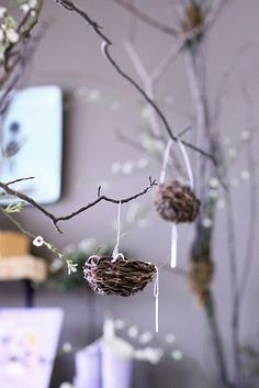 Mini nests hanging from the ceiling covering the span of a roof Easter Bilby, Resurrection Day, Market Displays, Easter Crafts, Easter Decor, Easter Ideas, Garden Items, Simply Beautiful, Special Day