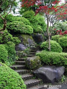If you live in a dry and arid climate then your desert landscaping is going to take a little more planning than some other parts of the country. desert landscaping will have to work with a plan that includes only plants and trees that Japanese Garden Landscape, Japanese Garden Design, Japanese Gardens, Japanese Garden Backyard, Terraced Backyard, Japan Garden, Zen Gardens, Home Garden Design, House Design
