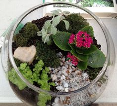 How to make a terrarium. I love plants and these are great for desk top gardens.