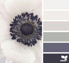 flora tones | design seeds | Bloglovin'
