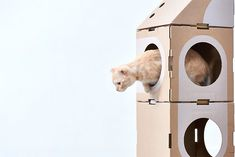 Architect Couple Turns Cardboard Boxes Into Stackable Cat Fort – Design You Trust