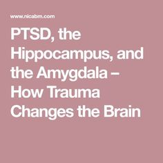 PTSD, the Hippocampus, and the Amygdala – How Trauma Changes the Brain