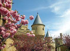 Castle in Olite