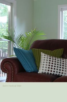 Living room with behr herbal mist paint