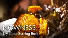 """Margot Henderson and Lily Cole in """"Burning Bush"""" by Kim Gehrig 