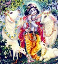 """""""After grazing the cows, when Lord Krishna returns in the evening at the time of cowdust, his face is charming like a lotus. The dark-hued Krishna's popular titles Govind and Gopal  reveal the grand majesty of cows. """""""