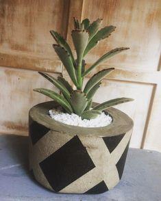 Diy Concrete Planters, Cement Garden, Cement Pots, Painted Clay Pots, Painted Flower Pots, Concrete Crafts, Concrete Art, Painting Cement, Ceramics Projects