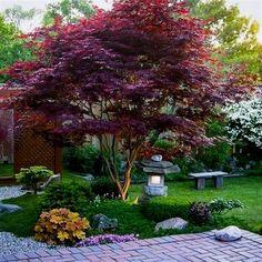 Beautiful Front Yard Landscaping Ideas (30) #LandscapingFrontYard