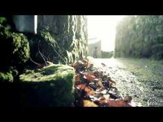"""nuevo videoclip de Vicente Amigo """"tierra"""""""