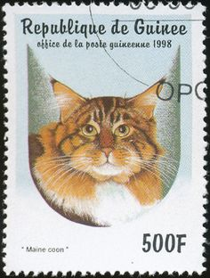 Republic of Guinea 1998 Cat Stamps