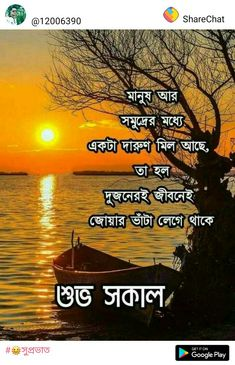 Free Good Morning Images, Good Morning Happy, Good Morning Messages, Good Morning Wishes, Good Morning Quotes, Happy Valentines Message, Valentine Messages, Bangla Quotes, Good Morning Wallpaper