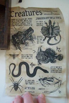 Kit de poción de la bruja o mago exigentes por ShadowAlley en Etsy