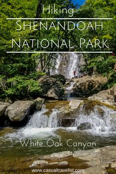 With waterfalls and secret swimming holes the White Oak Canyon Trail is one of the best hikes in Shenandoah National Park. Usa Roadtrip, Travel Usa, Appalachian Trail, Death Valley, White Oak Canyon, Empire State Building, Grand Canyon, Cities, Hiking In Virginia