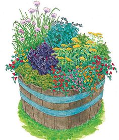 Image from http://www.allaboutrosegardening.com/images/burpee-herb-garden-kit.jpg.
