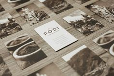 Podi The Food Orchid Branding 4 10 Beautiful Branding & Corporate Identity Design Projects For Inspiration