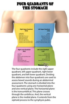 A nursing health assessment of the gastrointestinal system involves the examination of the abdomen and abdominal contents. This article contains 9 Tips for Performing a Nursing Health Assessment on the Gastrointestinal System. Nursing Assessment, Nursing School Notes, Nursing Schools, Nursing Tips, Nursing Programs, Nursing Degree, Funny Nursing, Nursing Cheat Sheet, Nursing Pneumonics
