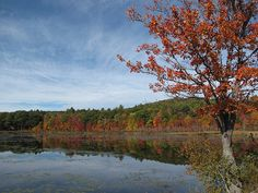 Autumn scene captured by Micrathena in the Monadnock Region of New Hampshire, on a beautiful October morning.