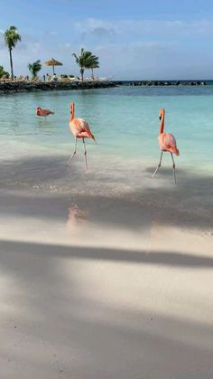 Beautiful Photos Of Nature, Beautiful Places To Travel, Beautiful Beaches, Beautiful Landscapes, Animals Beautiful, Beach Pictures, Nature Pictures, Mekka Islam, Applis Photo