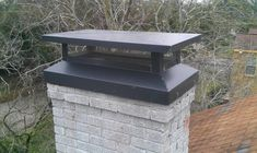 Chimney Cap Installation Services in Texas - Chimney & Wildlife