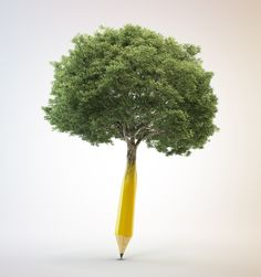 Four steps to writing organically (and the science behind why you should)  #writing #inspiration #writetip (image: Pencil tree)