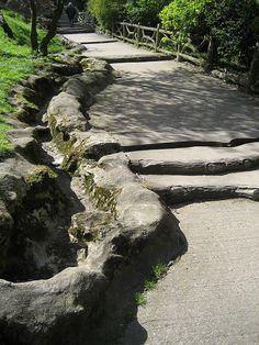 faux bois steps by lauraknosp, via Flickr