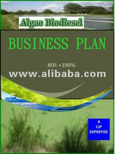 Customized, Complete & comprehensive Algae Biodiesel Business plan