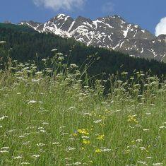 Most Beautiful, Beautiful Places, Bergen, Mountains, Nature, Travel, Mountain Range, Mountaineering, Hiking