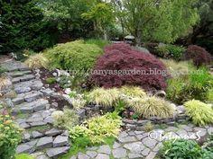 DIY steep slope garden | strange Garden | Pinterest | Terraced Garden, Gardens and Community Building