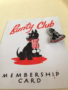 Bunty Club Nice Memories, When You Were Young, Those Were The Days, Comics Girls, My Children, Badges, Childhood Memories, Feel Good, Growing Up