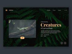 Free Design Materials - 30 Fresh Website Designs to Inspire You in 2018 Website Designs, Free Design, Color Change, Mesh, Inspire, Site Design, Web Design, Design Websites, Fishnet