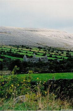 The Burren, Ireland...goes from green to stone. The only place in the world where both mediterranean and arctic plant life can exist in the same place.