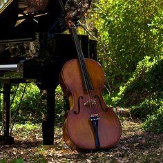 The Piano Guys: Steve's Cello Jackie Jr.