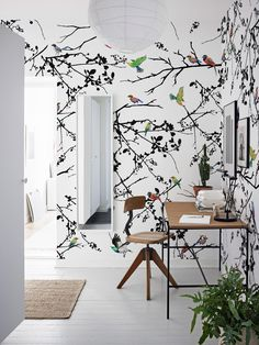 Spring Birds Wallpaper | COLORAYdecor.com: 2-day Shipping On Your Removable Wallpaper