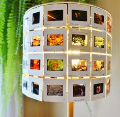 photo slide lamp shade flowers and gardens by lightreading on Etsy, $48.00